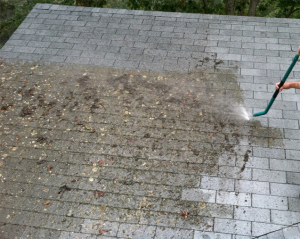 roofcleaning